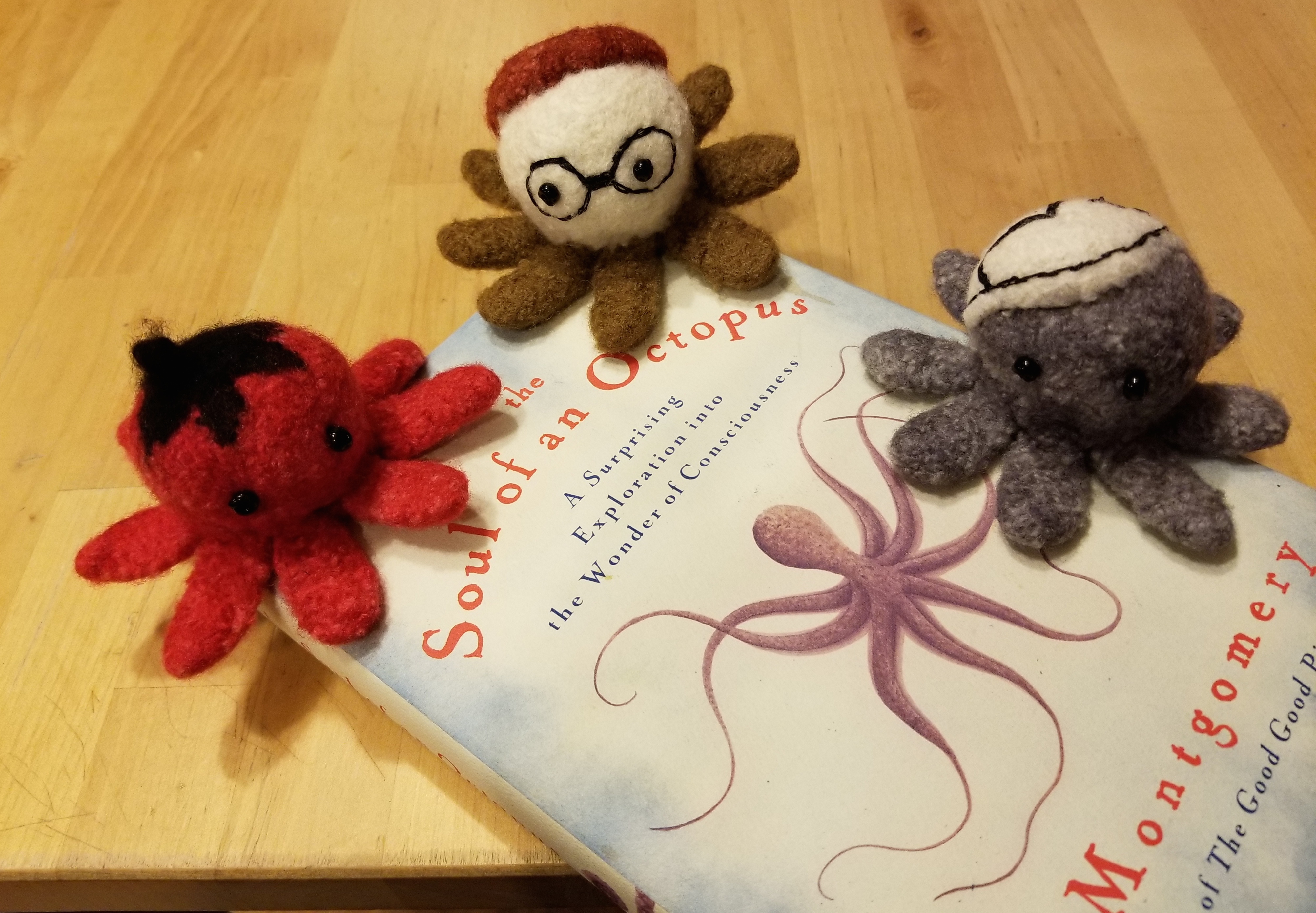 soaif octopods front view with book